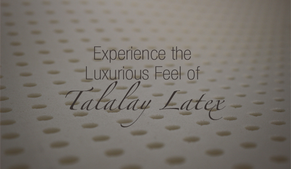 Experience Latex